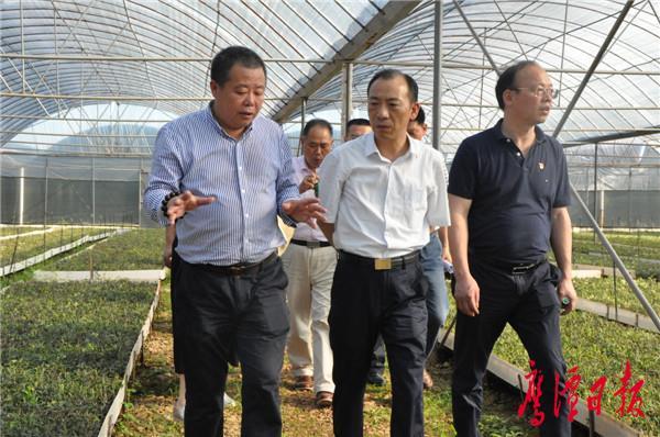 于秀明在余江调研时强调 牢固树立以人民为中心的发展思想  切实把经济发展好、乡村建设好、民生保障好