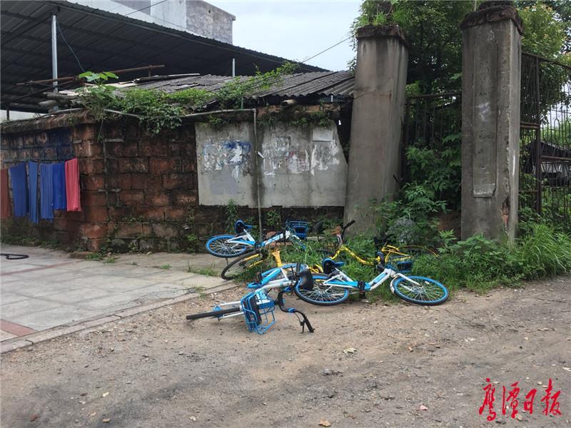 共享单车大调查(3).jpg