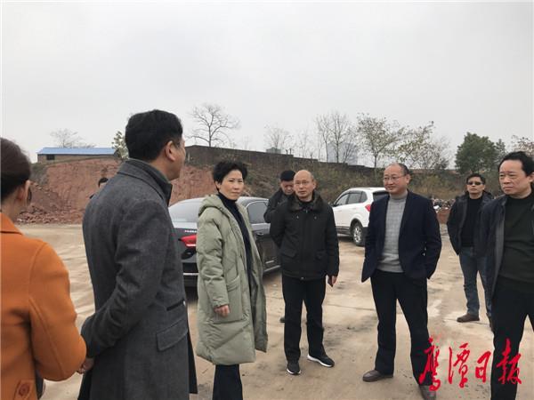 鹰潭市领导调研高桥片区中学选址规划情况