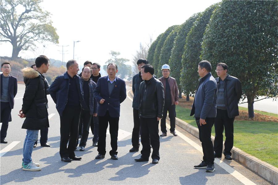 于秀明视察指导信江北路绿化提升项目建设