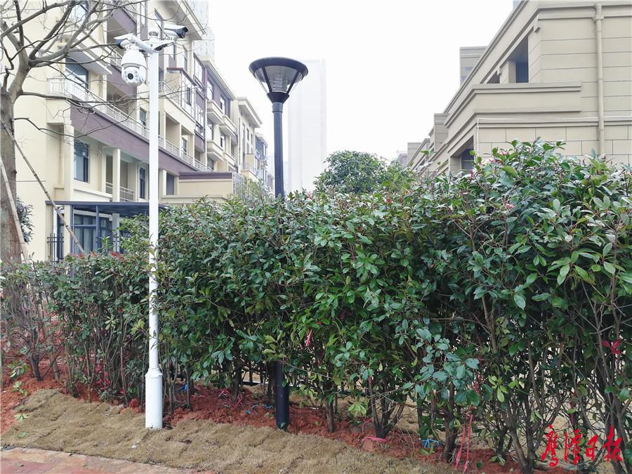 占用公共绿地-29日拍摄的21栋别墅.jpg